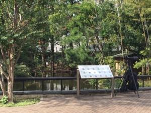 「東京都主税局から、秋のキャンペーンイベント情報のお知らせです。」
