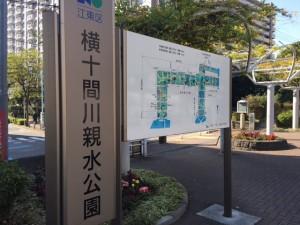 江東区のグルメ情報:「太陽のトマト麺 木場店」