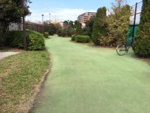膝に負担の少ないランを心掛けているので、江東区内のある公園では、フエルト地の芝の上でランができるのでありがたいです。