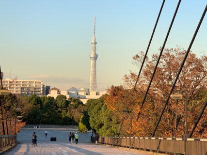江東区木場公園でのランニングは、季節の草花や景色に恵まれで快適に走る事ができます