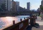 江東区の小名木川クローバー橋周辺は、ランコースとしてだけでなく、ハゼ釣りスポットとしても有名です