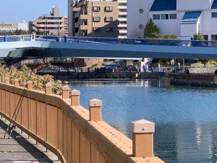 江東区にある小名木川クローバー橋で昨日もハゼ釣りをしました