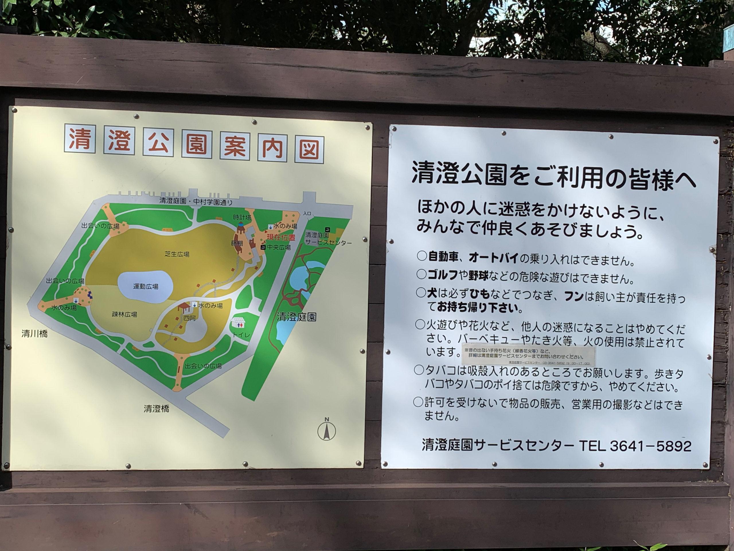 【江東区清澄公園】短時間でも気軽に走れるラン二ングコースです