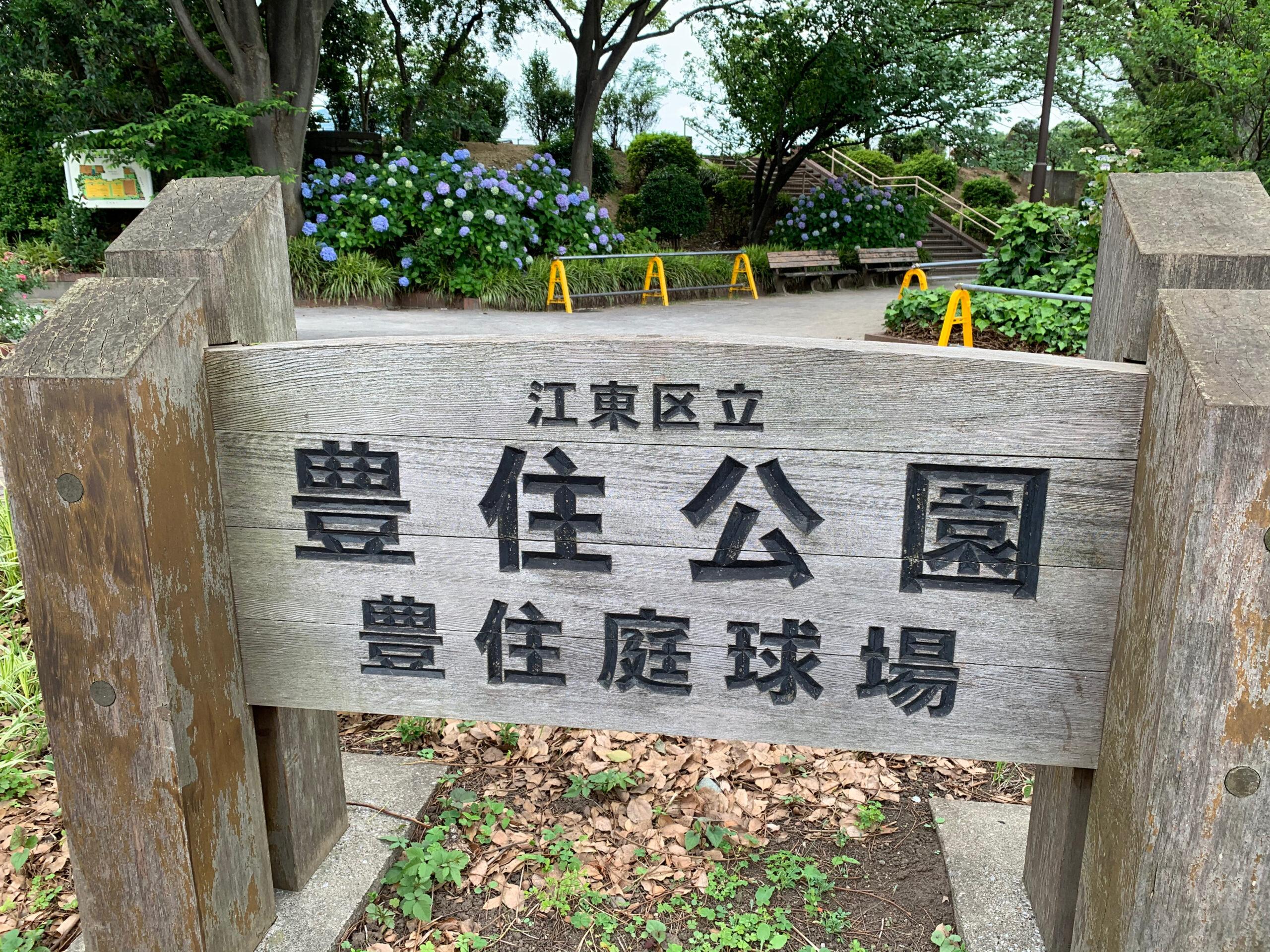 江東区立豊住公園周辺では、ランをしながら季節の花を愛でる事ができます